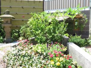 夏の花とスイカの実
