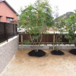 緑のあるお庭(^-^)