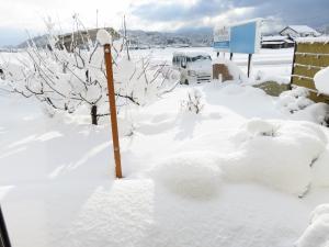 雪景色の展示場